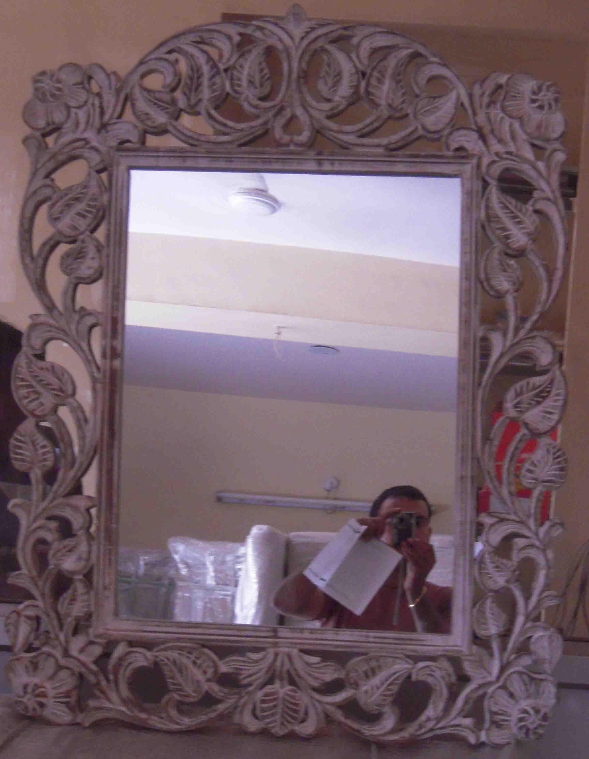 Mirror Zoom